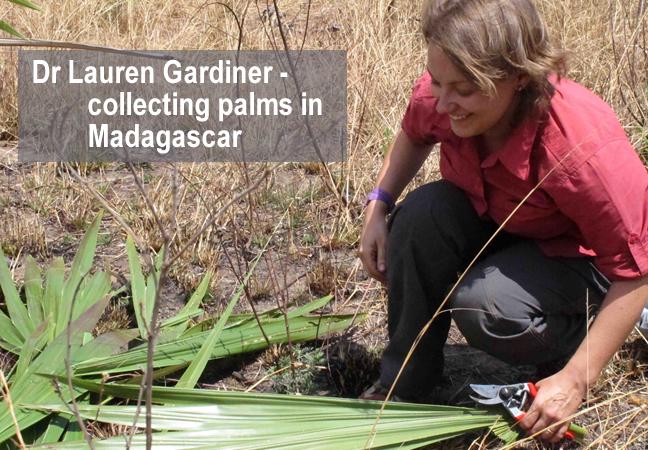 Dr Lauren Gardiner - a globe trotting botanist