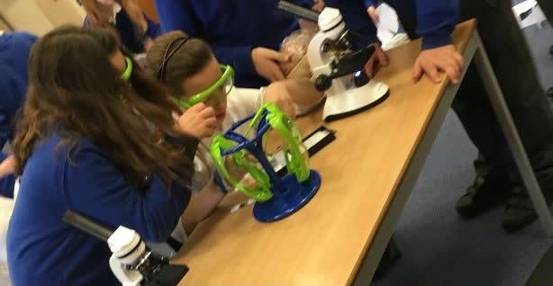 Essex ScienceGrrl Scienceweek 2016 school visits